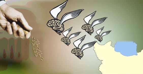 فرار مغزها از ایران: نقش «حسابداری منابع انسانی» کجاست؟