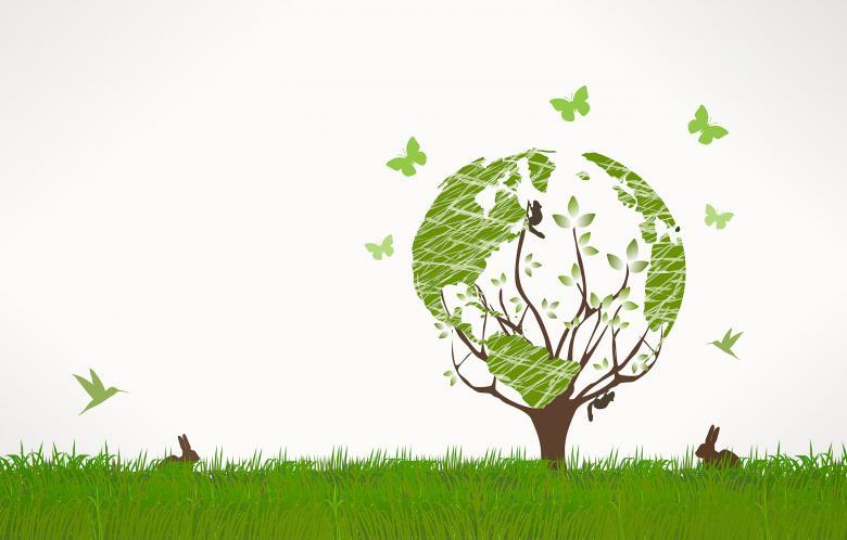 مبانی نظری حسابداری محیط زیست: تعریف، اهمیت و مراحل اجرایی حسابداری زیست محیطی